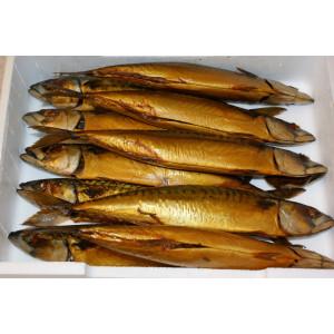 Makrel (Røget)